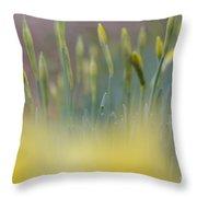 Bursting Into Spring 2 Throw Pillow