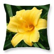 Bursting Lily  Throw Pillow