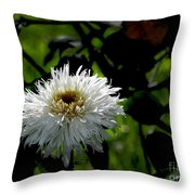 Bursting With Beauty Throw Pillow