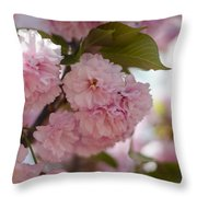 Bursting With Blooms Throw Pillow