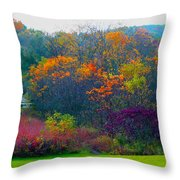 Bursting With Color 1 Throw Pillow