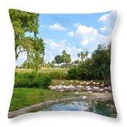 Busch Gardens Savannah Throw Pillow