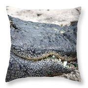 Busch Gator Throw Pillow