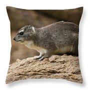 Bush Hyrax 2 Throw Pillow
