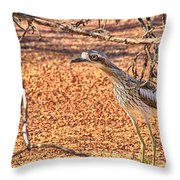 Bush Stone Curlew Throw Pillow