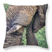 Bush Treat Throw Pillow
