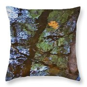 Second  Reflection In Bushkill Falls  Throw Pillow