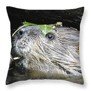 Busy Beaver Throw Pillow