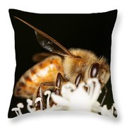 Busy Bee Throw Pillow