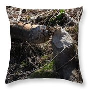 Busy Busy Beavers Throw Pillow