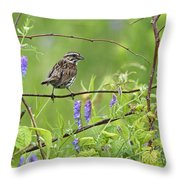 Busy Busy... Throw Pillow