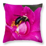 Busy Pink IIi Throw Pillow