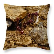 Busy Work Throw Pillow