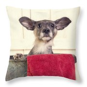 But I Don't Want A Bath Throw Pillow by Edward Fielding