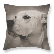 Remembering Butch Throw Pillow by Pat Abbott