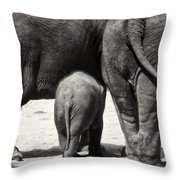Butt Butt Butt Throw Pillow by Joan Carroll