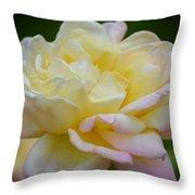 Buttercream Blush Throw Pillow