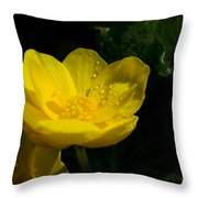 Buttercup And Dew Drops Throw Pillow