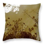 Buttercup Flowers Seen From Below - Monochrome Throw Pillow