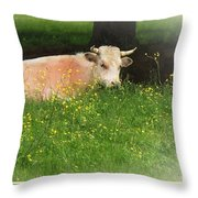 Buttercup Throw Pillow by Joy Nichols