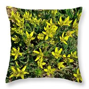 Buttercups In Cappadocia-turkey Throw Pillow