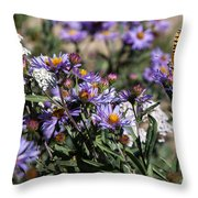 Butterflies And Wildflowers Throw Pillow