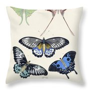 Butterflies I Throw Pillow