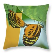 Butterflies Mating Out Of Bounds Throw Pillow