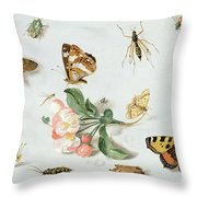 Butterflies Moths And Other Insects With A Sprig Of Apple Blossom Throw Pillow