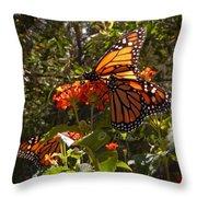 Butterflies Three Throw Pillow