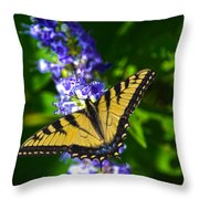 Butterflly Bush And The Swallowtail Throw Pillow