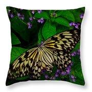 Butterfly - Yellow Green Purple Throw Pillow