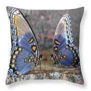 Butterfly 007 Throw Pillow