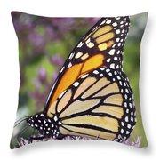 Butterfly 024 Throw Pillow