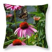 Butterfly 1 2013 Throw Pillow