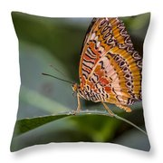 Butterfly Resplendent Throw Pillow