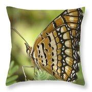 Butterfly 18 Throw Pillow