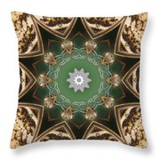 Butterfly 22 Throw Pillow