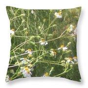 Butterfly 51 Throw Pillow