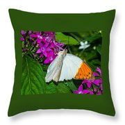 Butterfly 63 Throw Pillow