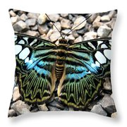 Butterfly Amongst Stones Throw Pillow