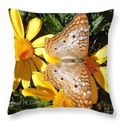 Butterfly And Daisies Throw Pillow