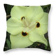 Butterfly Anthers Throw Pillow