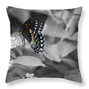 Butterfly Art Wings Together Throw Pillow