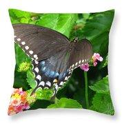 Butterfly Ballot Throw Pillow