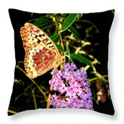 Butterfly Banquet 2 Throw Pillow by Will Borden