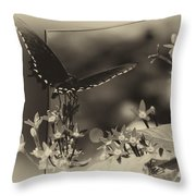 Butterfly Black 06 In Heirloom Finish Throw Pillow