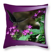 Butterfly Black 16 By 20 Throw Pillow