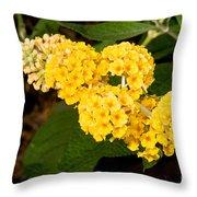 Butterfly Bush Flower Throw Pillow