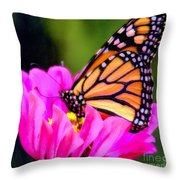 Butterfly Cup Throw Pillow